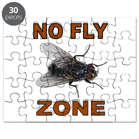 NO FLY ZONE Puzzle