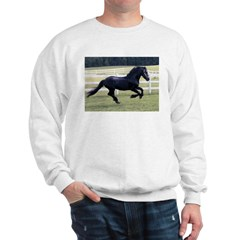 Baron Galloping Sweatshirt