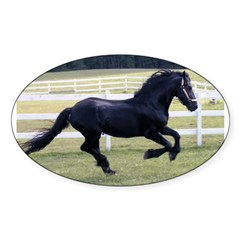 Baron Galloping Oval Decal