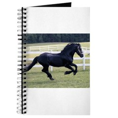 Baron Galloping Journal