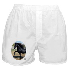 BARON Boxer Shorts