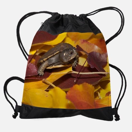 November_W7Z4749.jp... Drawstring Bag