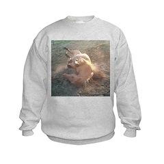 ROLLING Sweatshirt