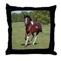 Pinto Foxtrotter Throw Pillow