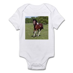 Pinto Foxtrotter Infant Creeper