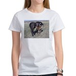 Paints and Pintos Women's T-Shirt