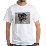 Paints and Pintos White T-Shirt