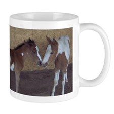 Paints and Pintos Mug