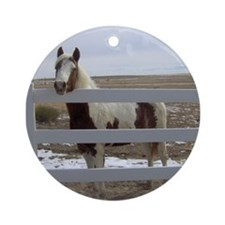 Paints and Pintos Ornament (Round)