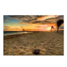 Coconut beach Galapagos Postcards (Package of 8)