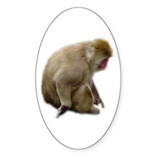 snow monkey Oval Decal