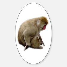 snow monkey Oval Decal
