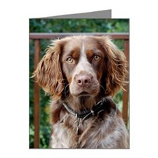 Spaniel brittany spaniel Note Cards (Pk of 20)