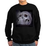 Scary Skull Sweatshirt (dark)