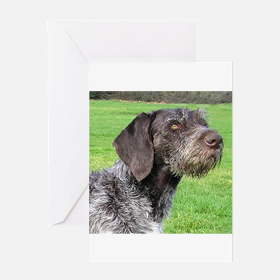 german wirehaired pointer Greeting Cards