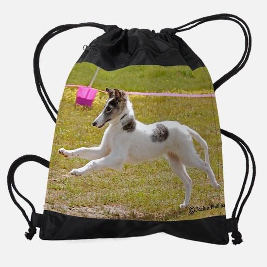 Silken Windhound 3.jpg Drawstring Bag