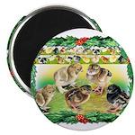 Chicks For Christmas! Magnet