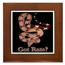 Red Tailed Boa3 Framed Tile (black)
