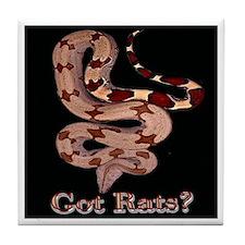 Red Tailed Boa3 Tile Coaster (black)