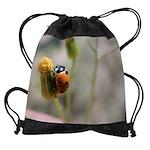 ladybugCALENDAR - WALL 75_H_F.png Drawstring Bag