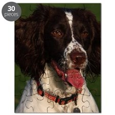 English Springer Spaniel sticking her tongu Puzzle