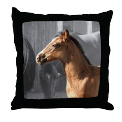 DAKOTA Throw Pillow