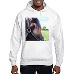 MAYBE Hooded Sweatshirt