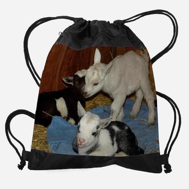 baby goat3.jpg Drawstring Bag