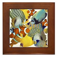 Fish Party Framed Tile