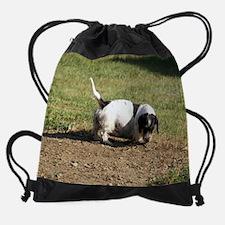 Unique Piebald dachshund Drawstring Bag