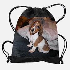 Funny Piebald dachshund Drawstring Bag