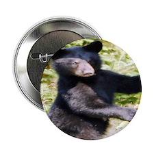 black bear cub Button