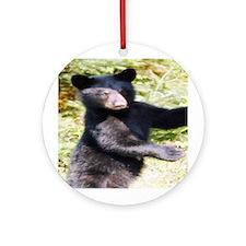 black bear cub Ornament (Round)