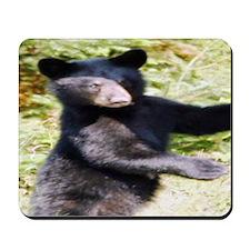 black bear cub Mousepad