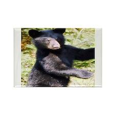 black bear cub Rectangle Magnet