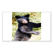 black bear cub Rectangle Decal