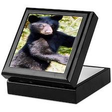black bear cub Keepsake Box