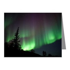 Aurora Silhouette Note Cards (Pk of 20)