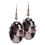 Boston terrier Oval