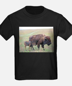 Bison in the Spring T