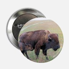 """Bison in the Spring 2.25"""" Button"""