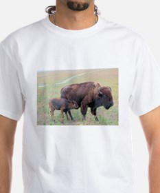 Bison in the Spring Shirt