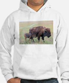 Bison in the Spring Hoodie