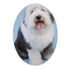 Portrait of old English Sheepdog s Ornament (Oval)