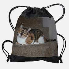 RMFCR-02539-a18.png Drawstring Bag