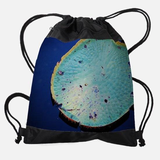 16x20 Big Green LilyPad Small Poste Drawstring Bag