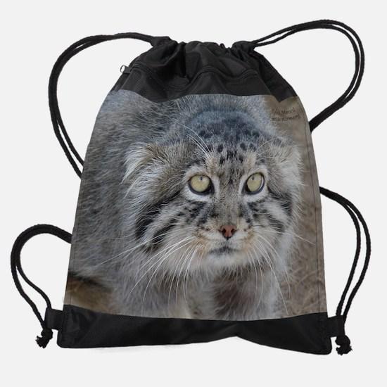 gobi.jpg Drawstring Bag