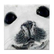 Harp Seal 3 Tile Coaster