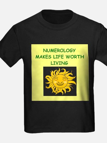 numerology T-Shirt