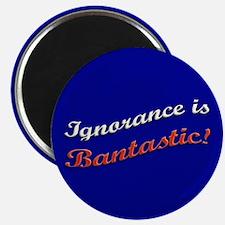 Banned Books Ignorance Magnet